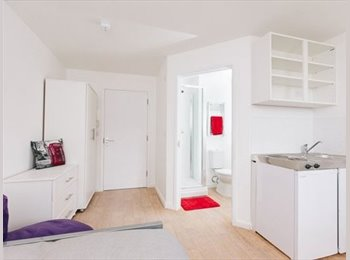 EasyRoommate UK - 2 months+ in beautiful high quality studio - Springbourne, Bournemouth - £127 pcm