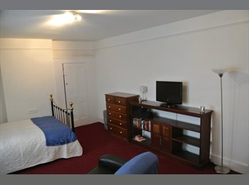 Large Double Bedsit SW14