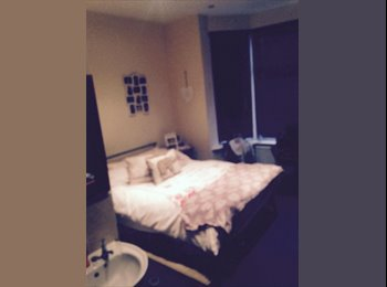 EasyRoommate UK - Double Room in 6 bed house with great housemates - Ecclesall Road, Sheffield - £95 pcm