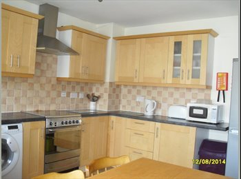 EasyRoommate UK - STUDENT ROOMS - WINTON - ACADEMIC YEAR 2014/2015 - Winton, Bournemouth - £370 pcm