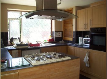 EasyRoommate UK - Bexleyheath friendly relaxed houseshare - Bexleyheath, London - £540 pcm