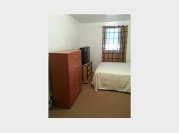 Furnished/Renovated/Upscale Apartment Share