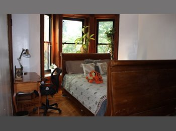 Room in a Brownstone