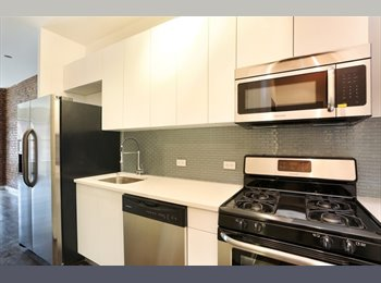 Rent one room in a brand new 3 bdrom loft with W/D