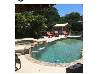 LIive in paradise! Roomate needed in palm harbor!