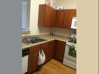EasyRoommate US - Room for rent - Odessa, Odessa - $860 pcm