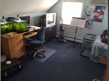 Large room in house share