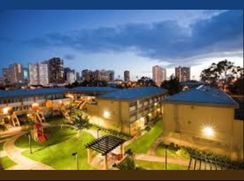 Room available! In Honolulu