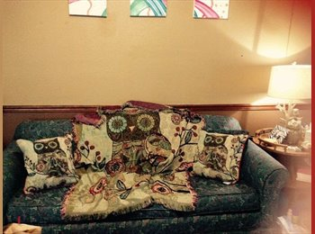 EasyRoommate US - Looking for a roomate to share expenses - Springfield, Springfield - $400 pcm