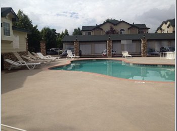 EasyRoommate US - CHEAP! Move in ASAP! No deposit and March is Free! CSU/Football stadium close!!!! - Fort Collins, Fort Collins - $385 pcm