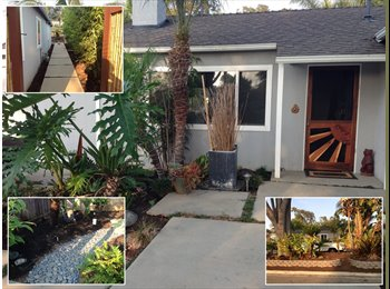 EasyRoommate US - Republic Tropical House - Costa Mesa, Orange County - $800 pcm