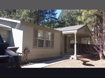 EasyRoommate US - Room for Rent - Flagstaff, Other-Arizona - $500 pcm
