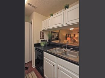 Need another roommate for 3br 2ba apartment