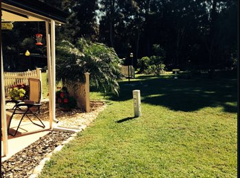 EasyRoommate US - Bedroom with private bathroom - Vero Beach, Other-Florida - $440 pcm