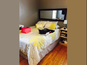 EasyRoommate US - Adorable Ranch Close to Downtown Ferndale - Royal Oak & Vicinity, Detroit Area - $450 pcm