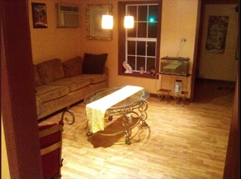 EasyRoommate US - Great house with a room for rent for female only - Springfield, Springfield - $350 pcm