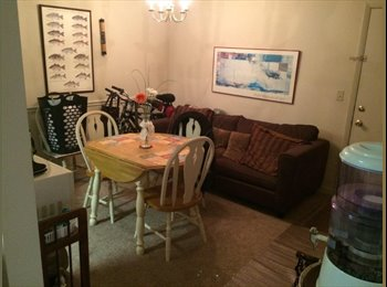 EasyRoommate US - Great furnished apt - Charleston, Charleston Area - $1,400 pcm