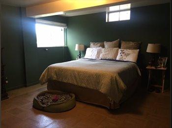 EasyRoommate US - Spacious, sunny living close to OU & conveniences! - Pontiac/Auburn Hls/Bloomfd Twp, Detroit Area - $600 pcm