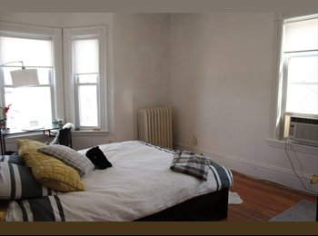 Large, sunny bedroom in cute, spacious apartment