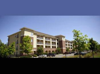 EasyRoommate US - Apartment Lease Transfer - Tuscaloosa, Tuscaloosa - $670 pcm