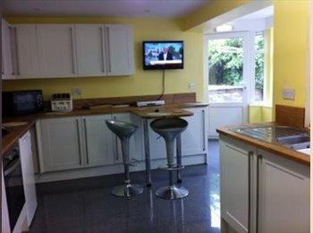 EasyRoommate UK - Double size attic room. Newport, Isle of Wight - Newport, Newport - £390 pcm