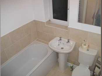 EasyRoommate UK - Student House Share To Rent 2015 / 2016 - Bolton, Bolton - £230 pcm