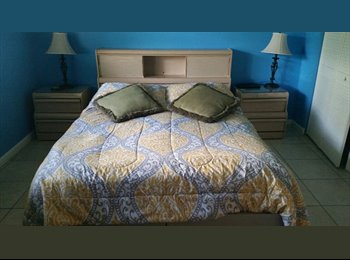Furnished Room available in Weston close to I 595