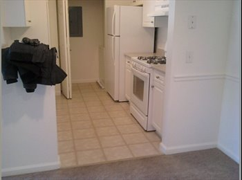 EasyRoommate US - 1 Roomate needed in 2 bedroom appartment - New Haven, New Haven - $845 pcm
