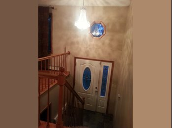 EasyRoommate US - Looking for Roommates for Gorgeous House Share - New Haven, New Haven - $750 pcm