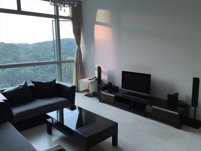 Near Bukit Batok MRT condo common room for rent - Bukit Badok, D21-24 West - Image 1