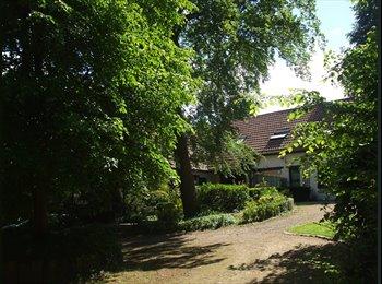 Appartager BE - 2 CHAMBRES DANS BELLE MAISON PRES DE LLN - Louvain-la-Neuve, Louvain-la-Neuve - 280 € / Mois