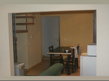 Appartager BE - Maison en colocation pour 4 personnes - Outremeuse, Liège-Luik - 1.000 € / Mois
