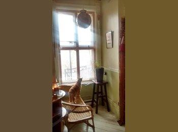 EasyRoommate CA - chambre ensoleillée ligne verte UQAM-MCGILL - Mercier - Hochelaga - Maisonneuve, Montréal - $420 pcm