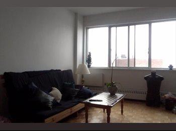 EasyRoommate CA - large room available in 4 1/2 apt - Le Plateau-Mont-Royal, Montréal - $690 pcm