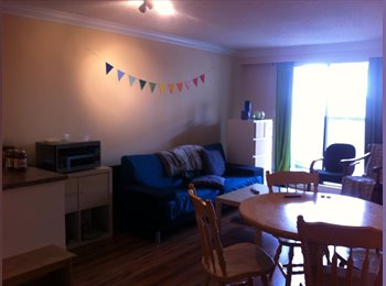 EasyRoommate CA - Spacious Room for Rent in Veg Apartment - Hastings - Sunrise, Vancouver - $575 pcm