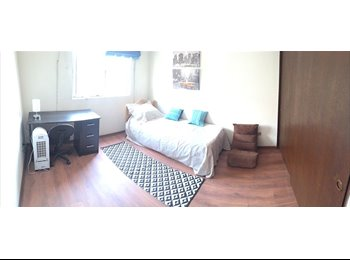 I share my apartment / Comparto departamento