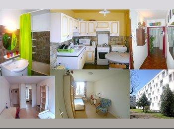 Appartager FR - CHAMBRE MEUBLÉE EN COLOCATION X 4 - Grands boulevards, Grenoble - 340 € / Mois