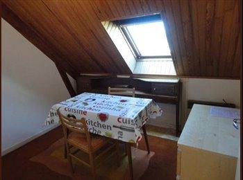 Appartager FR - LANVEUR UNIVERSITES  MEUBLE DISPONIBLE RENTREE - Lorient, Lorient - 330 € / Mois
