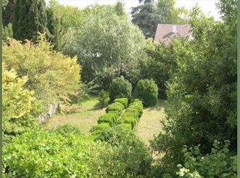 Appartager FR - Nature, tranquilité , charme, meublé, équipé - Saint-Jean-de-Braye, Orléans - 290 € / Mois