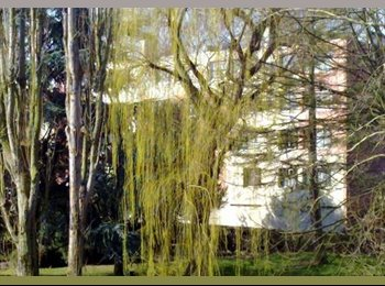 Appartager FR - Appart calme, clair, propre, confortable - Sarcelles, Paris - Ile De France - 400 € / Mois