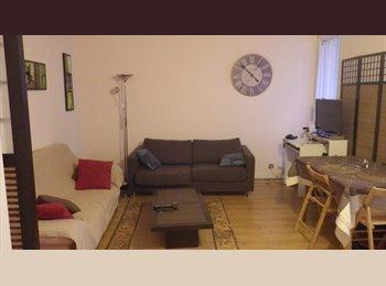 location chambre meublée dans F3 / Elancourt