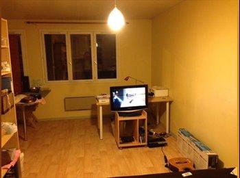 Appartager FR - Sous-loue studio meublé 30m2 - VAUBAN-COLBERT - Vauban Esquermes, Lille - 400 € / Mois