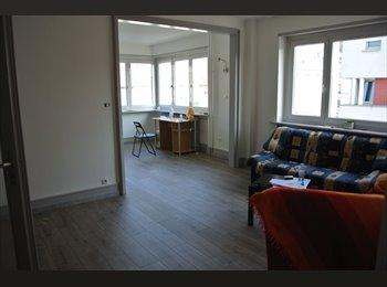 Appartager FR - Propose colocation entre filles - Mulhouse, Mulhouse - 310 € / Mois