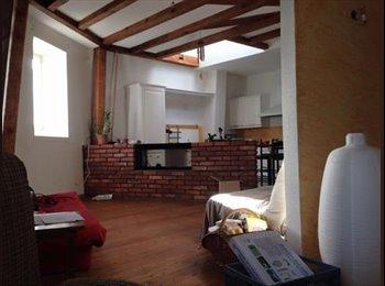 Appartager FR - Centre-Ville - 4 pers - 130 m2 - AVRIL/JUILLET +++ - Mulhouse, Mulhouse - 230 € / Mois