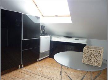 Appartager FR - chambre spacieuse lumineuse - Rouen, Rouen - 350 € / Mois