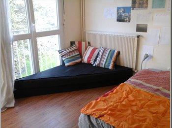 Appartager FR - Colocation/ avec étudiante - Mont-Saint-Aignan, Rouen - 250 € / Mois