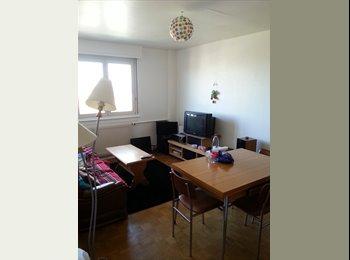 Colocation à 3 dans  Illkirch centre