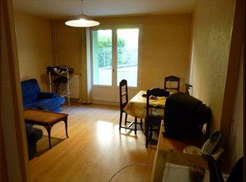 Appartager FR - Colocation en meublé - Clermont-Ferrand, Clermont-Ferrand - 330 € / Mois