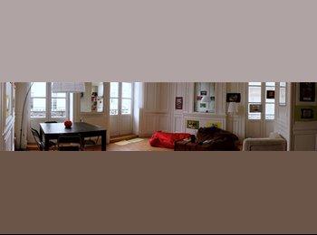 Appartager FR - Je propose une colocation à Bordeaux - Hôtel de ville - Quinconces, Bordeaux - 434 € / Mois