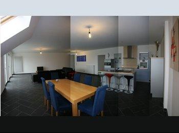 Duplex 6 chambres et 3 sdb (350m2) à KAHLER Lux